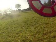 Dog Frisbee POV