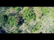 Showreel Crazy Drone