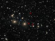 Perseus Dwarf Galaxies zoom-in animation