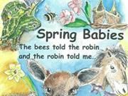 Spring Babies - Video Book Trailer