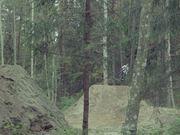 Maris Ornins | 4 bikes