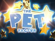 The Pet Factor Cat