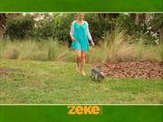Zeke Leash New Version