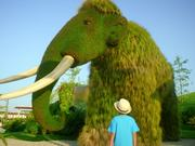 EXPO 2016 Antalya - Grass Sculptures
