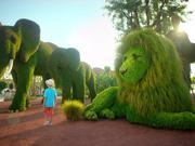 EXPO 2016 Antalya - Grass Sculptures