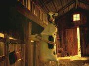 Chieng / Nestle' Milk/ Shake