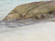 Amazing Koh Lipe Island