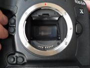 Canon EOS-1D X - Continuous Shooting Mode