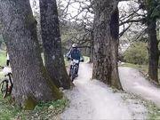 Bike The day