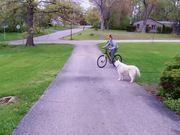 Lander's New Bike