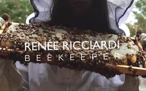 A Beekeepers Exploration