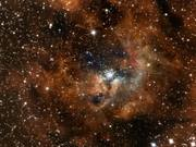 Zooming in on the compact star cluster in NGC 3603