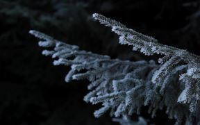 winter moods 2015 by Elmer Laahne (New version)