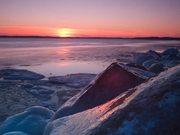 Cold Winter Dream