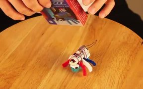 How to Make Bristlebots