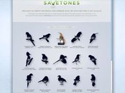 Save Brasil Video: Birds