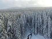 Von Eis und Schnee - Dreisessel