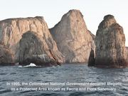 The Malpelo Fauna And Flora Sanctuary