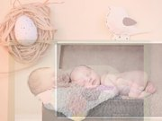 The Album People - Newborn & Baby Slideshow