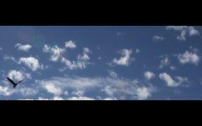 Grand Teton National Park: Air Born