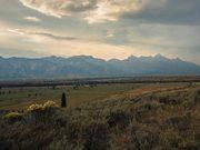Grand Teton National Park: Living with Wildlife