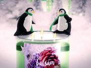 Bath & Bodyworks Holiday 2015