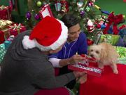 Nick Jr's Five Days of Christmas Premieres