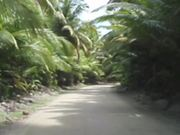 Video Postcard From Cocos