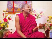Venerable Jinpa Short Video Portrait