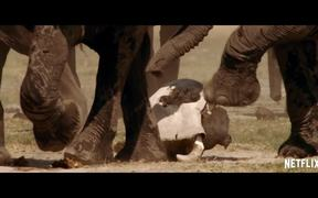 The Ivory Game Official Trailer