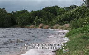 Biscayne National Park: Biscayne Bay