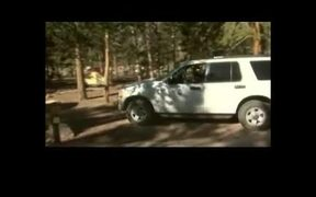 Rocky Mountain National Park: Bears