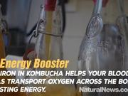 6 Amazing Health Benefits of Kombucha