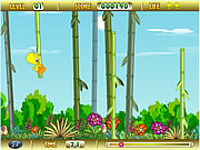 Tweety Bamboo Bounce