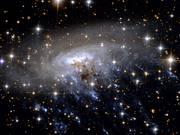 Panning across ESO 137-001