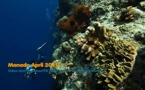 Canon 7D Underwater Video