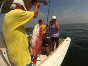 Gulf of Mexico, Recreational Fishing