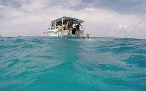Cozumel Diving 2016