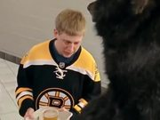 Boston Bruins: Date