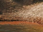 Everglades National Park: Fish Biologist