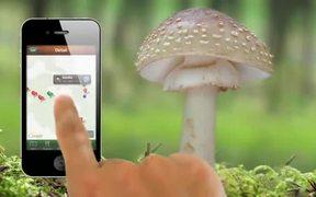 iHoubař - App for iPhone Tutorial