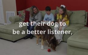 Keep Family Dogs Out of Animal Shelters
