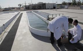 From wastewater to renewable energy