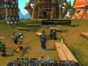 Safety: An Interview in World of Warcraft