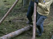 How to move heavylogs without machinery