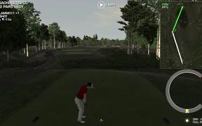2015 Year of Perfect Golf