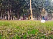 Hassan, Irtaza & Jannat Tahir at Safari Park