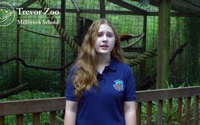 Red Panda Birth Annoucement 2014