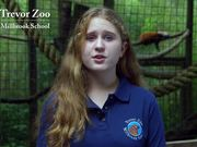 Red Panda Birth Annoucement 2014