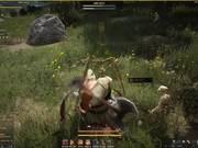 Black Desert - Closed Beta 2 Giant Gameplay 2